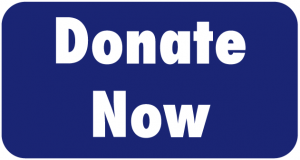 Button to submit donations